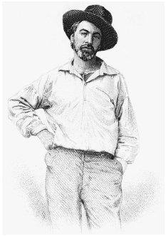 Walt Whitman. Engraving from the frontispiece to Leaves of Grass, 1855. CORBIS