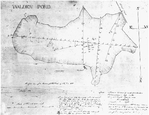 Survey of Walden Pond by Thoreau, 1846. COURTESY OF THE CONCORD FREE PUBLIC LIBRARY