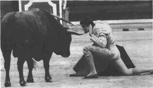 Bullfighting is a popular attraction in Spain.