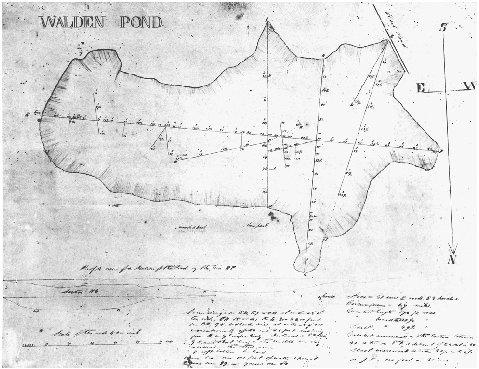 Essay/Term paper: Summary of walden pond